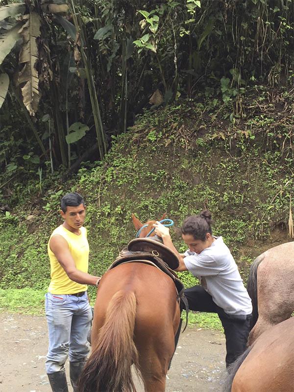 Horseback Riding, El Monte Sustainable Lodge, Mindo