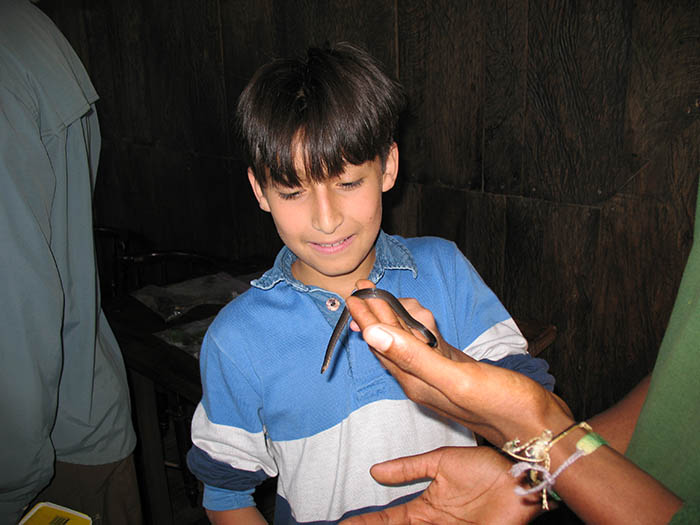 Young Visitor Observing a Harmless Snake, Mindo Ecuador, El Monte Sustainable Lodge
